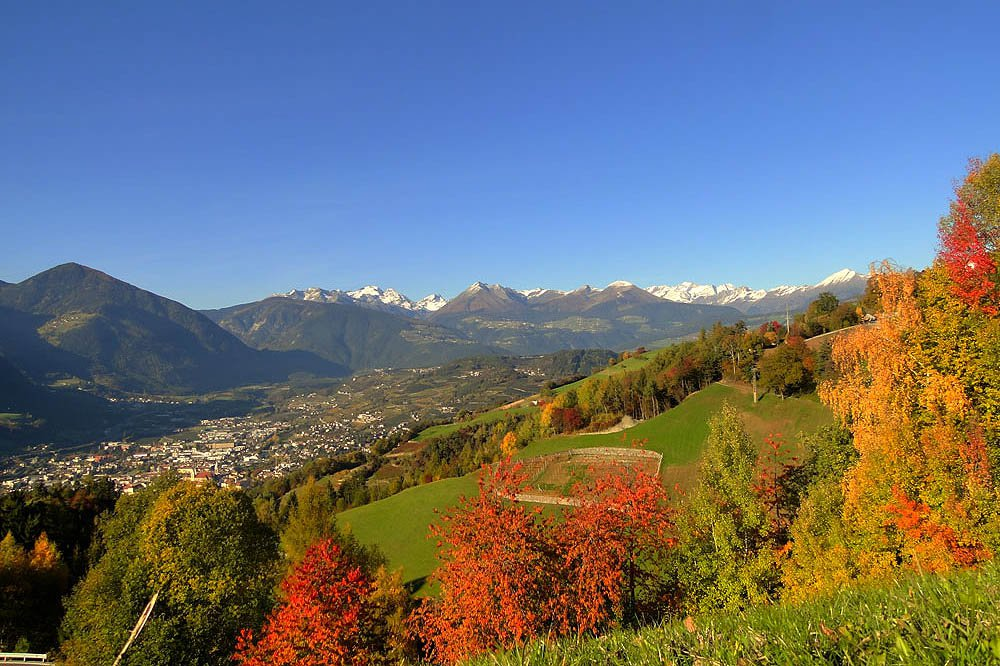 """Golden Autumn"" in South Tyrol – A delight for gourmets"