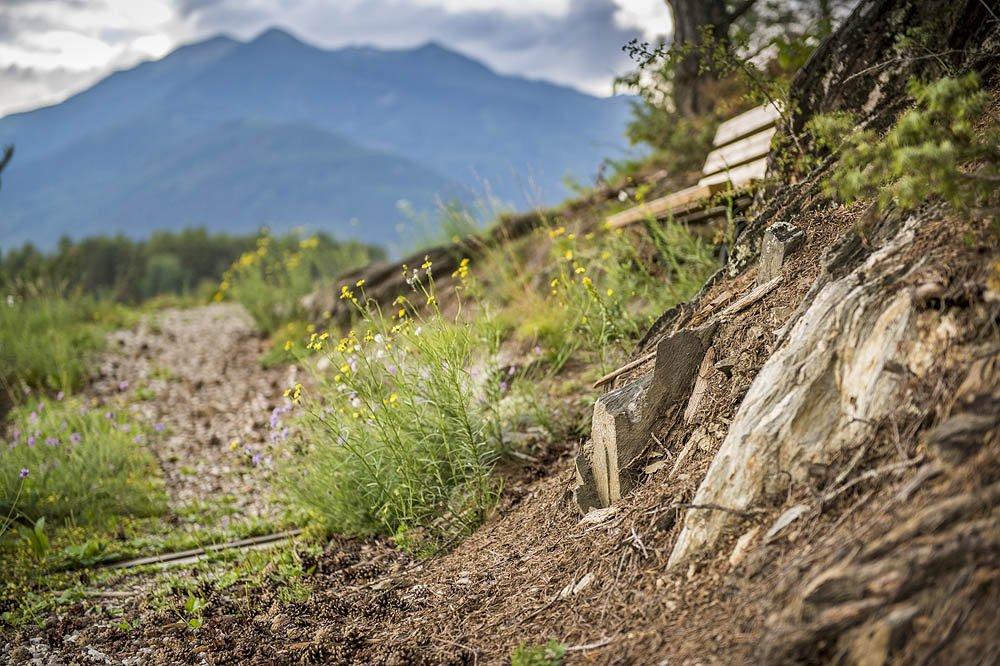 Die schönsten Rad- und Wanderwege von ganz Südtirol liegen im Eisacktal